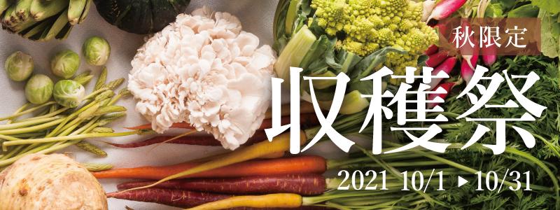 秋限定収穫祭